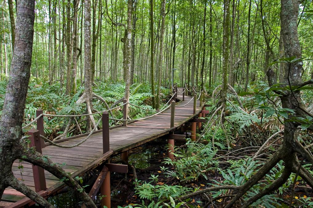 Foto 3 Eco Theme Park di Batam