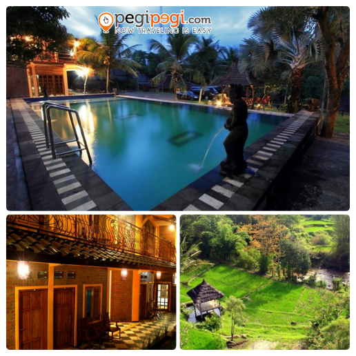 Kolam renang, penampakan penginapan, dan pemandangan sawah menghijau di Paddy City Resort Malang