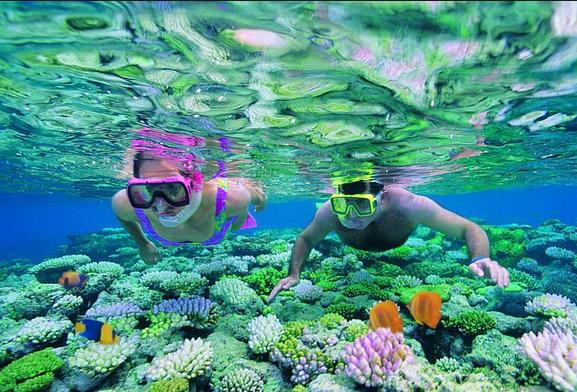 foto: www.great-barrier-reef.com