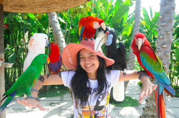 Kakatua Bali Bird Park