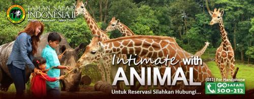 taman-safari-prigen-pasuruan