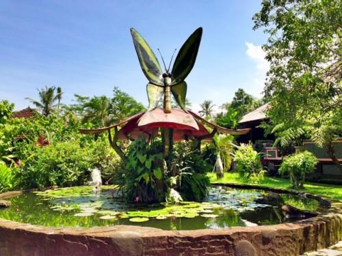 bali-butterfly-park