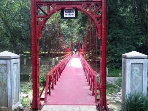 Bogor-Timur-20121126-00659