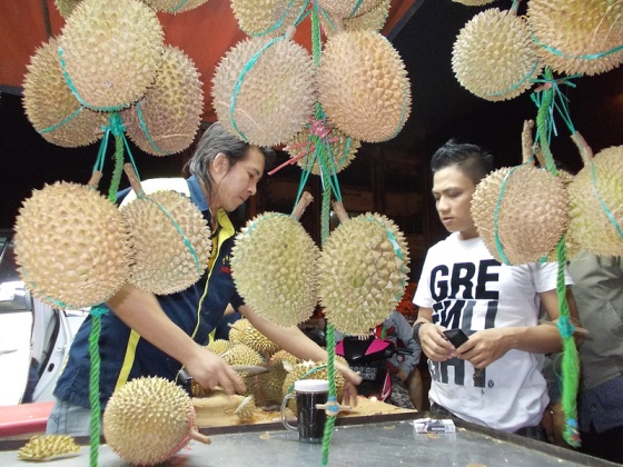 p01-durian.img_assist_custom-560x422