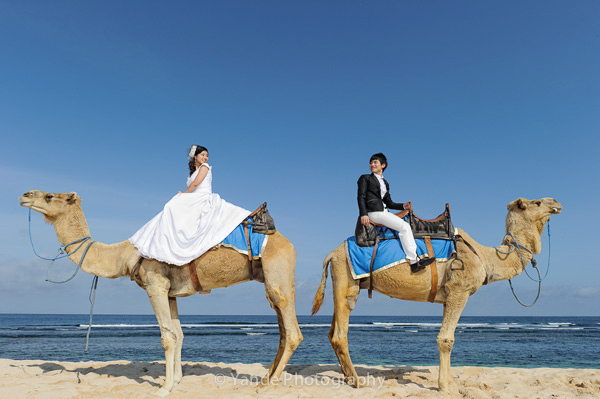 pre wedding bali1