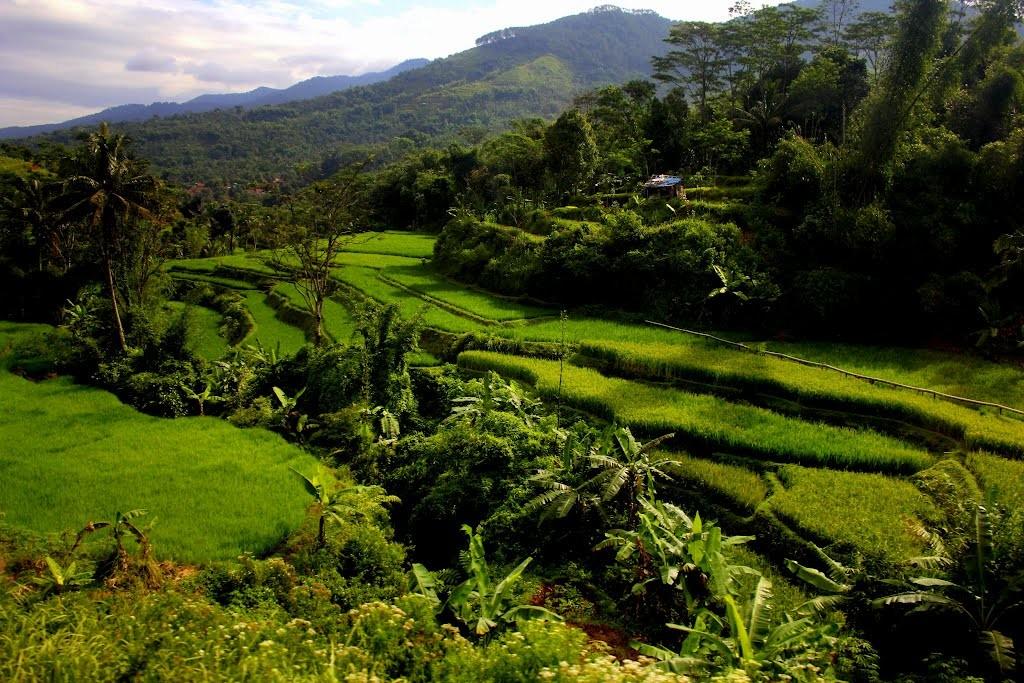 7 Wisata Alam di Solo yang Sayang untuk Dilewatkan!