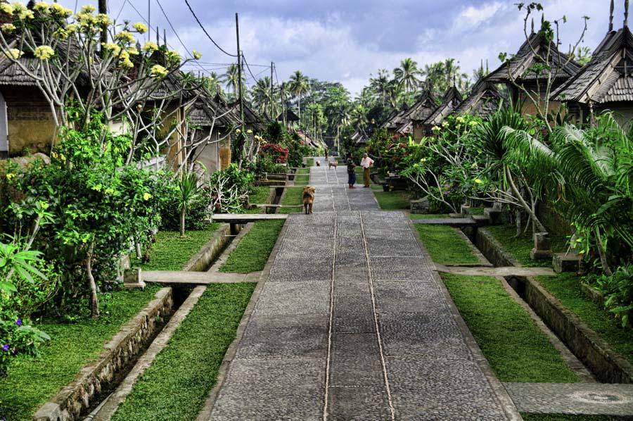 Desa Penglipuran - Desa Terbersih di Indonesia dan Dunia