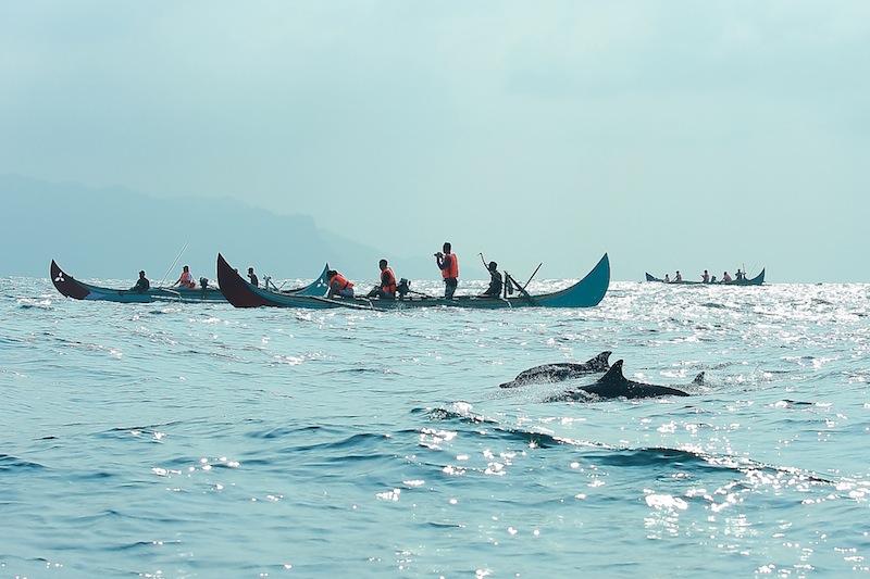 Teluk Kiluan (telusurindonesia.com)