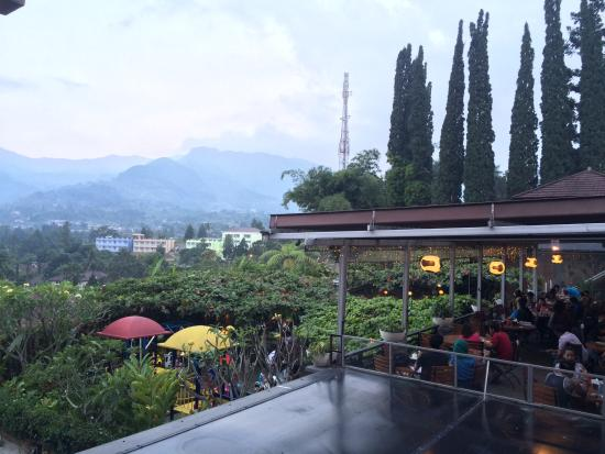 cimory mountain view1