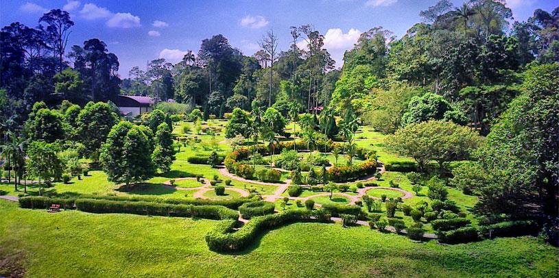 taman-botani-negara