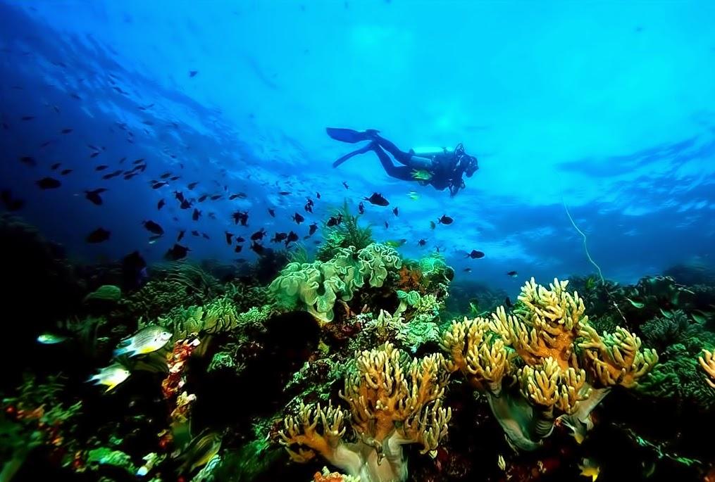 anekawisatanusantara.blogspot.com
