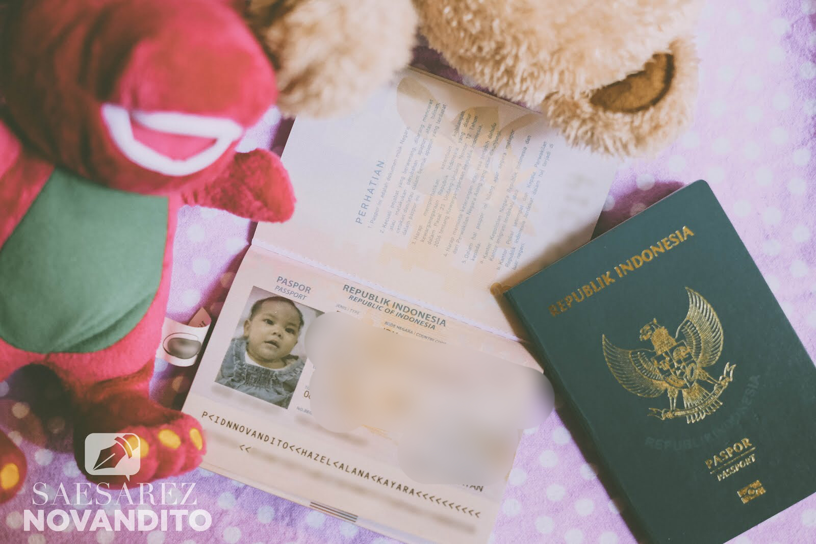 paspor-bayi
