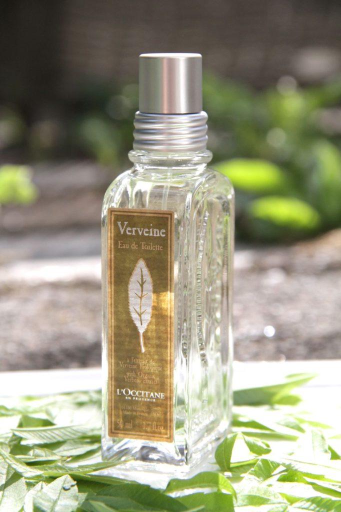parfum-untuk-traveling-ke-hutan