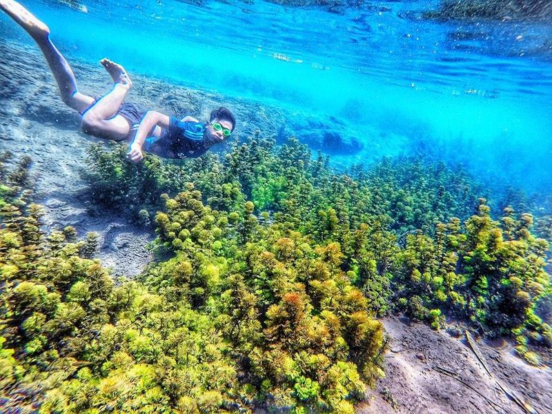 Nikmatnya Berenang di Sumber Sirah yang Jernih