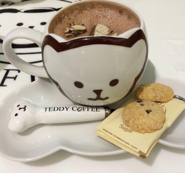 teddy-coffee