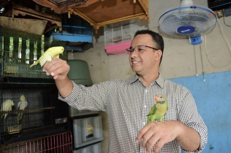Hasil gambar untuk anies baswedan memelihara burung