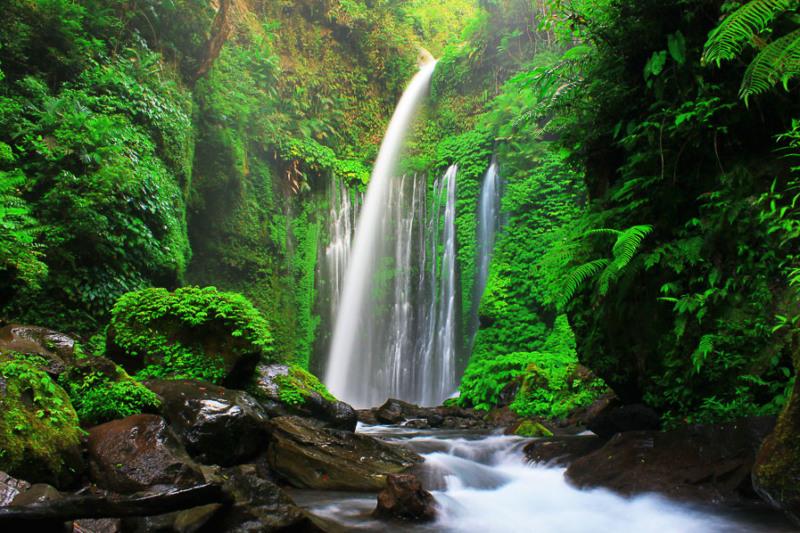 Tiu Kelep Lombok Utara Desa Senaru