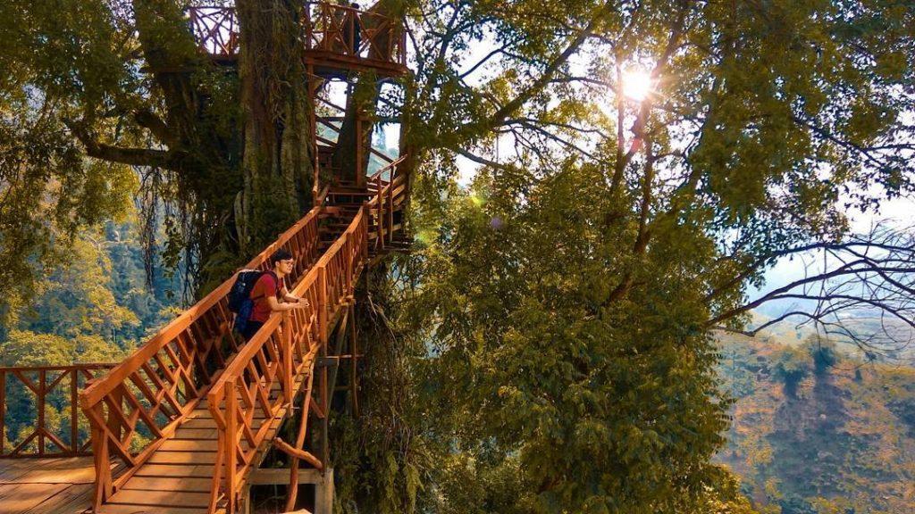 4 Rumah Pohon Di Bogor Untuk Refreshing Di Akhir Pekan