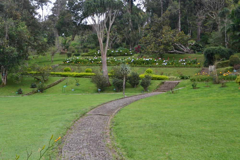 Kebun Raya Cibodas Puncak Bogor
